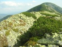 Syniak Mountain, trekking in the Carpathians, Ukraine