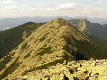 Doboshanka Mountain, trekking in the Carpathians, Ukraine